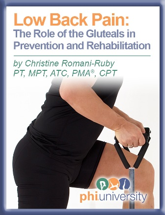 Low Back Pain The Role of the Gluteals in Prevention and Rehabilitation