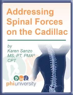 SpinalForceadsmall.jpg